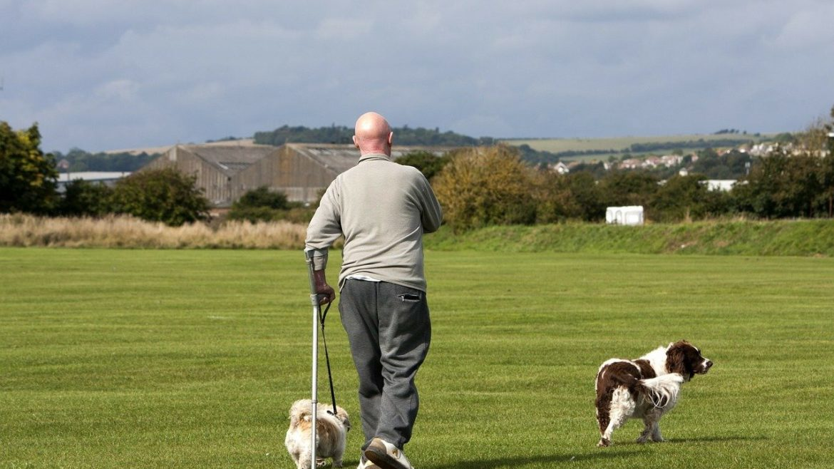 Physical activity reduces heart disease deaths for older adults