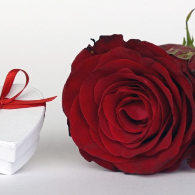 Are you sure that your Valentine's gift will please your beloved?