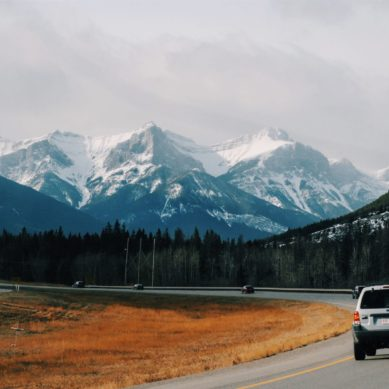 Getting Where You Need to Go: Tips for Financing Your Family Car