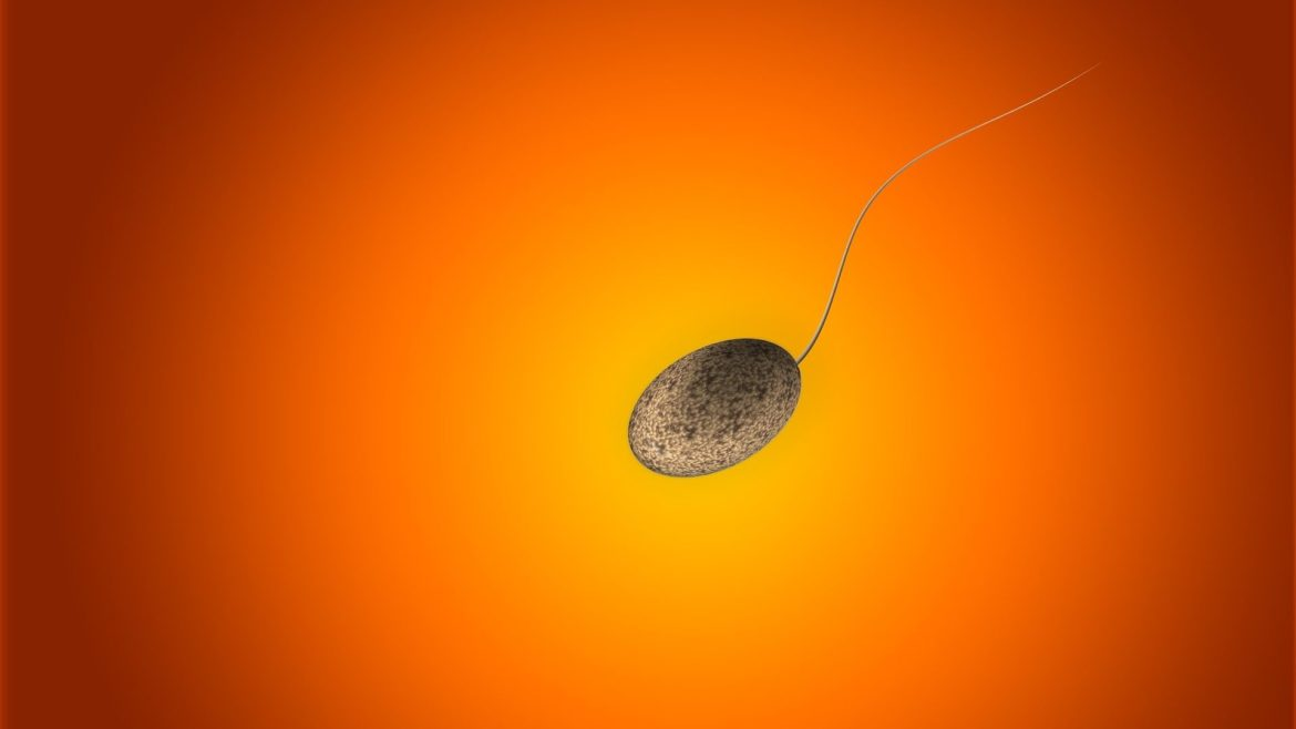 The fertility of Western men has fallen by 50 percent