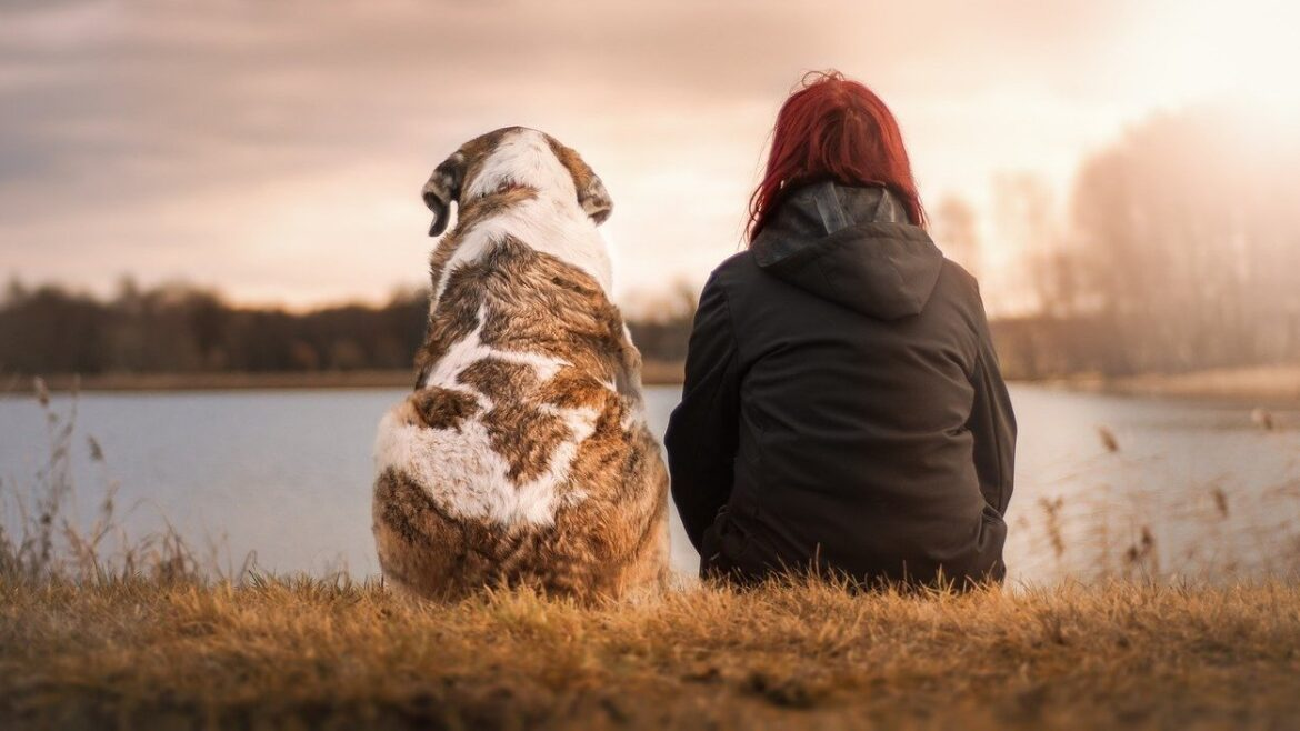 Your dog loves you and would do anything to save you, or so the science says