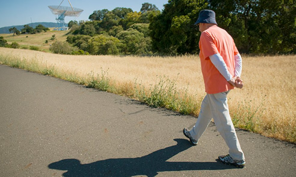 How long should you walk to stay fit and lose weight?